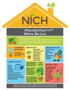 Info Graphic on Benefits of Indoor Plants