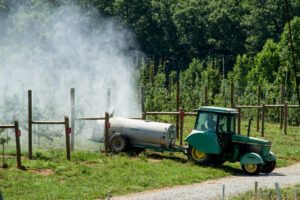 Spraying apple orchard